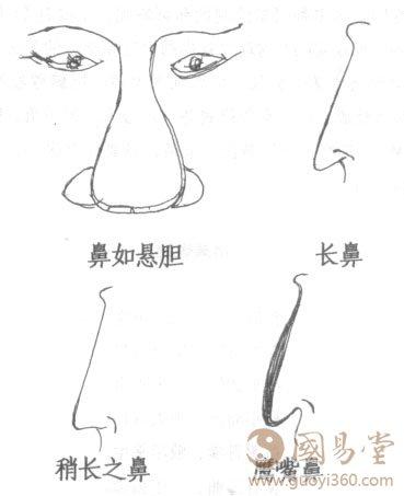 鼻子 面相 :男人 面相鼻 子